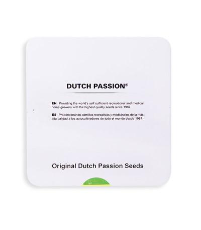 Семена марихуаны Glueberry O.G. в оригинальной упаковке
